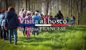 Visita al Bosco in lingua FRANCESE