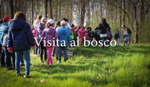 Visita al Bosco