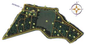 bosco-delle-viole-mappa